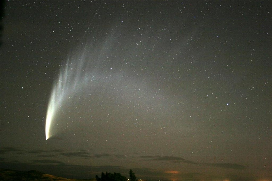 McNaught in