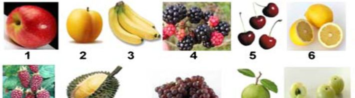 fruits Fruits include: 1 apple, 2 apricot, 3 banana, 4