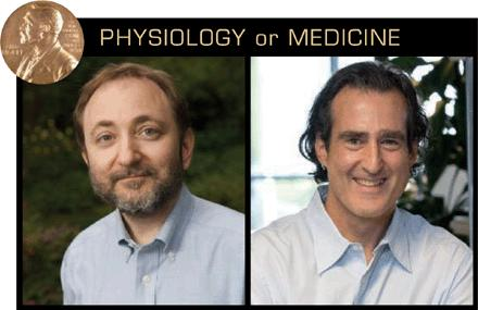 Nobel Prize in Physiology or Medicine 2006 Silence is golden η «ΣΙΩΠΗ» είναι «ΧΡΥΣΟΣ» Andrew Fire (left) and Craig Mello won the Nobel Prize for their groundbreaking discovery of RNAi's