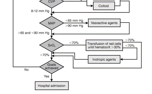 Treatment Algorithm Rivers E et al.