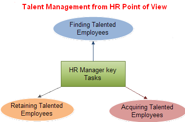 ρήκα 3:. Talent Management from HR Point of view, πεγή-www.