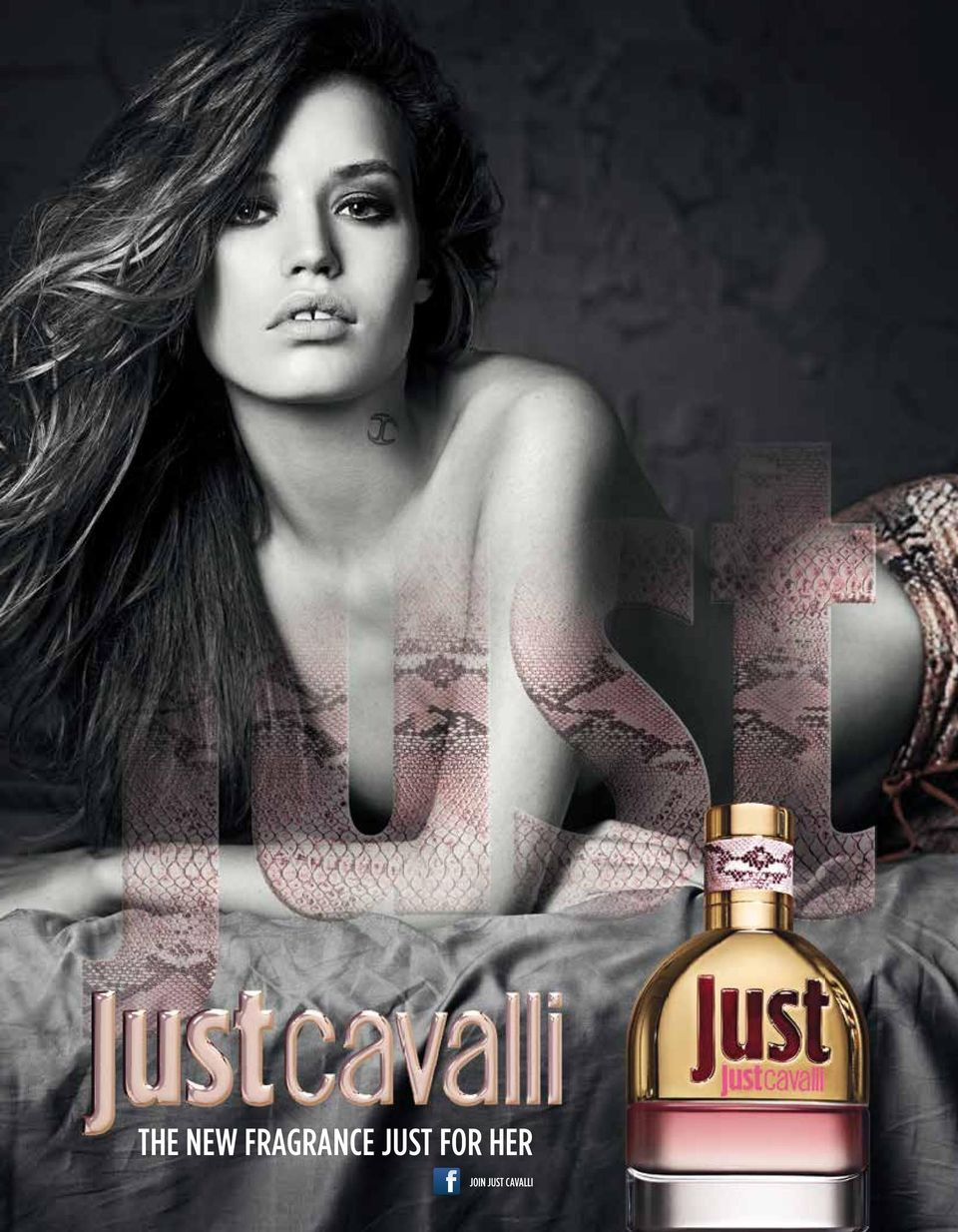 S 11 THE NEW FRAGRANCE