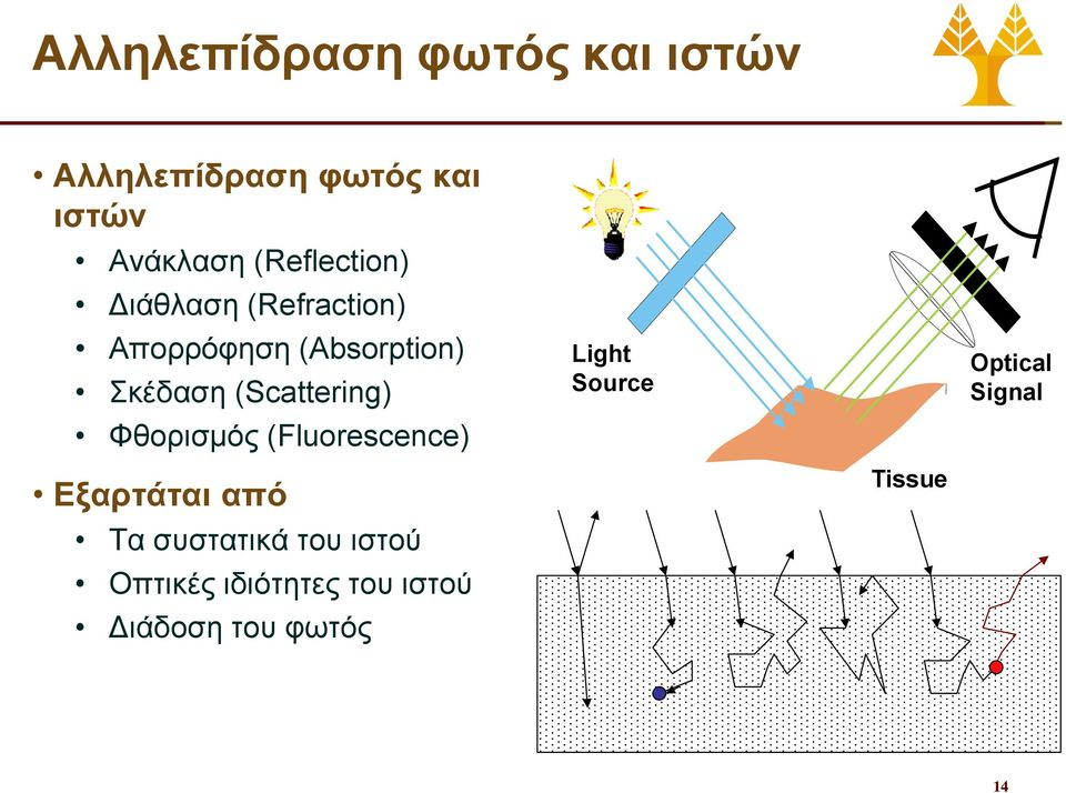 (Scattering) Φθορισμός (Fluorescence) Light Source Optical Signal