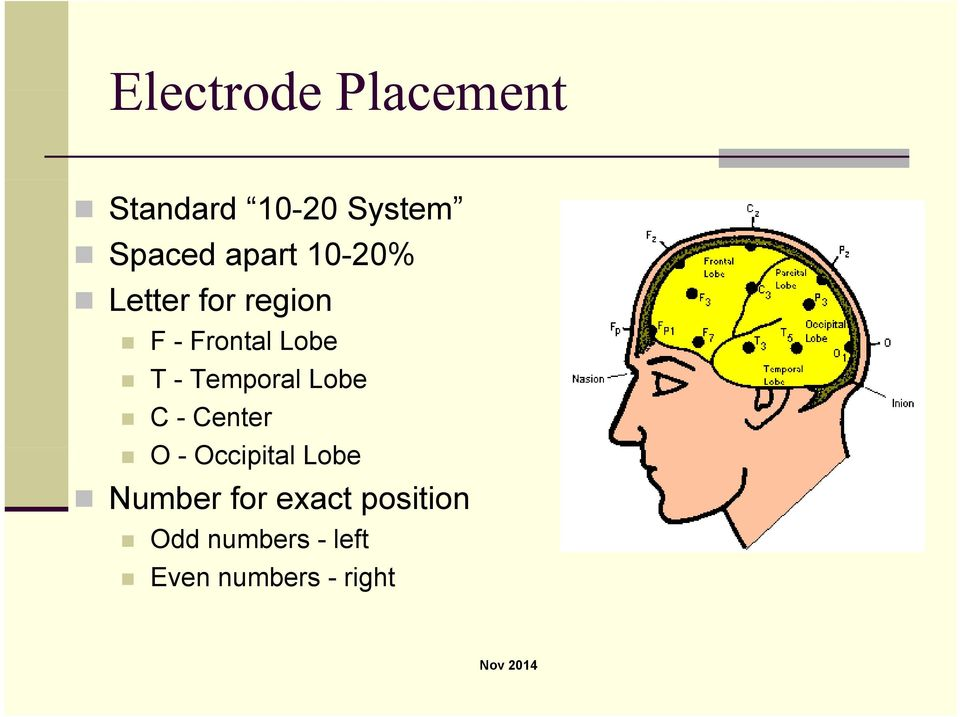 Temporal Lobe C - Center O - Occipital it Lobe Number
