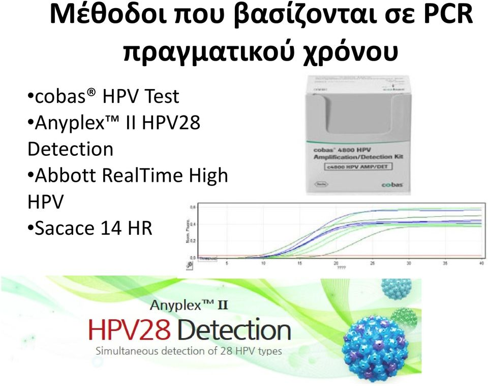 Test Anyplex II HPV28 Detection