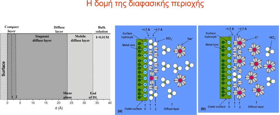 7 Å + + + - NO 3 Na + Surface hydroxyls K + - NO 3 Metal ions