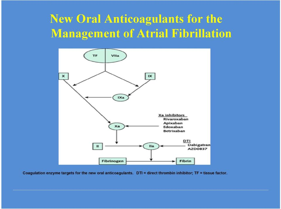 targets for the new oral anticoagulants.