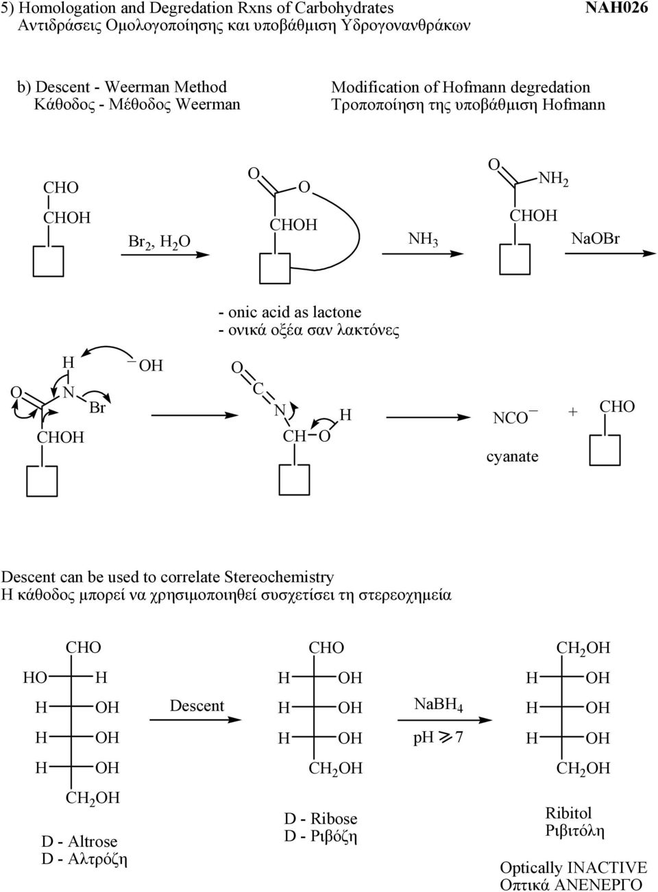 lactone - ονικά οξέα σαν λακτόνες C N C _ NC cyanate C Descent can be used to correlate Stereochemistry Η κάθοδος μπορεί να χρησιμοποιηθεί