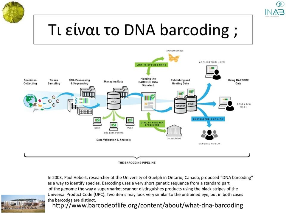 Barcoding uses a very short genetic sequence from a standard part of the genome the way a supermarket scanner distinguishes