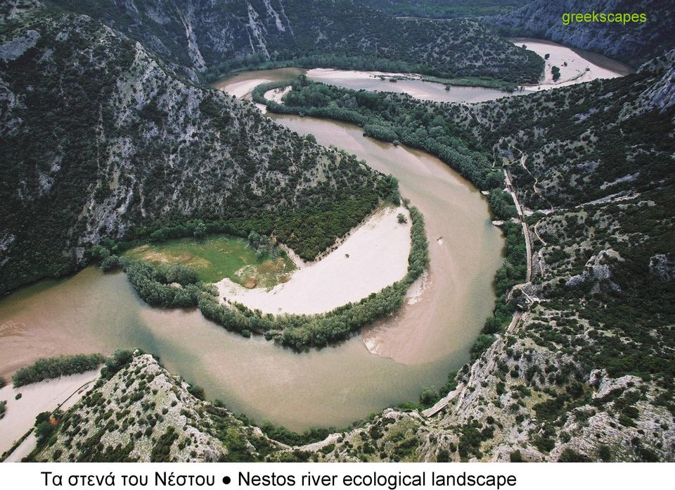 river ecological