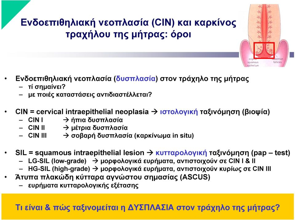 CIN = cervical intraepithelial neoplasia ιστολογική ταξινόμηση (βιοψία) CIN I ήπια δυσπλασία CIN II μέτρια δυσπλασία CIN III σοβαρή δυσπλασία (καρκίνωμα in situ) SIL = squamous