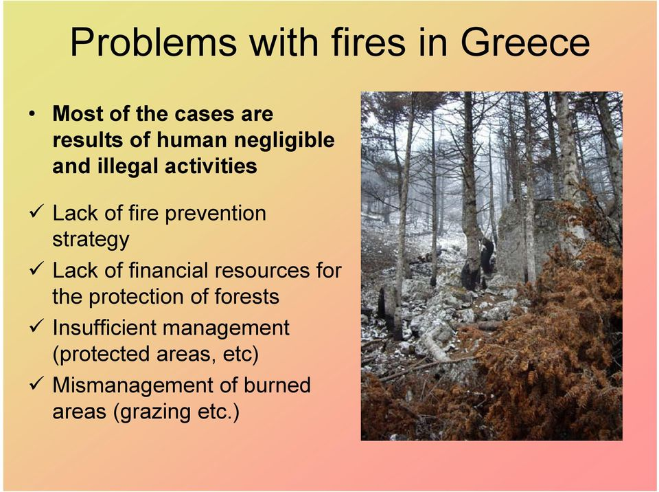 of financial resources for the protection of forests Insufficient