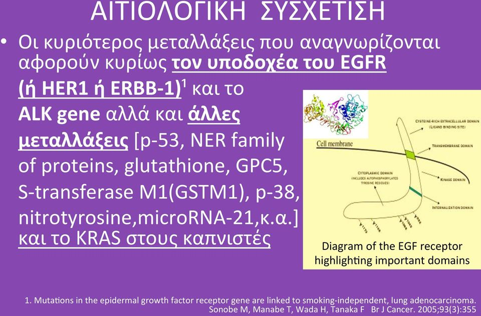 nitrotyrosine,micrornaô21,κ.α.] καιτοkrasστουςκαπνιστές DiagramoftheEGFreceptor highligh ngimportantdomains 1.