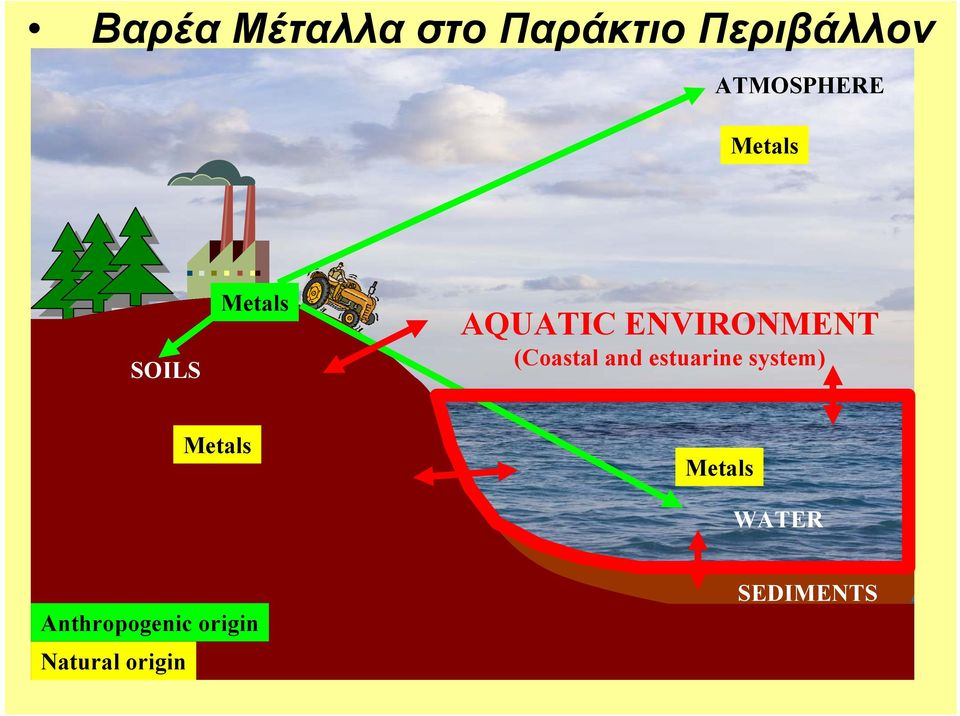 ENVIRONMENT (Coastal and estuarine system)