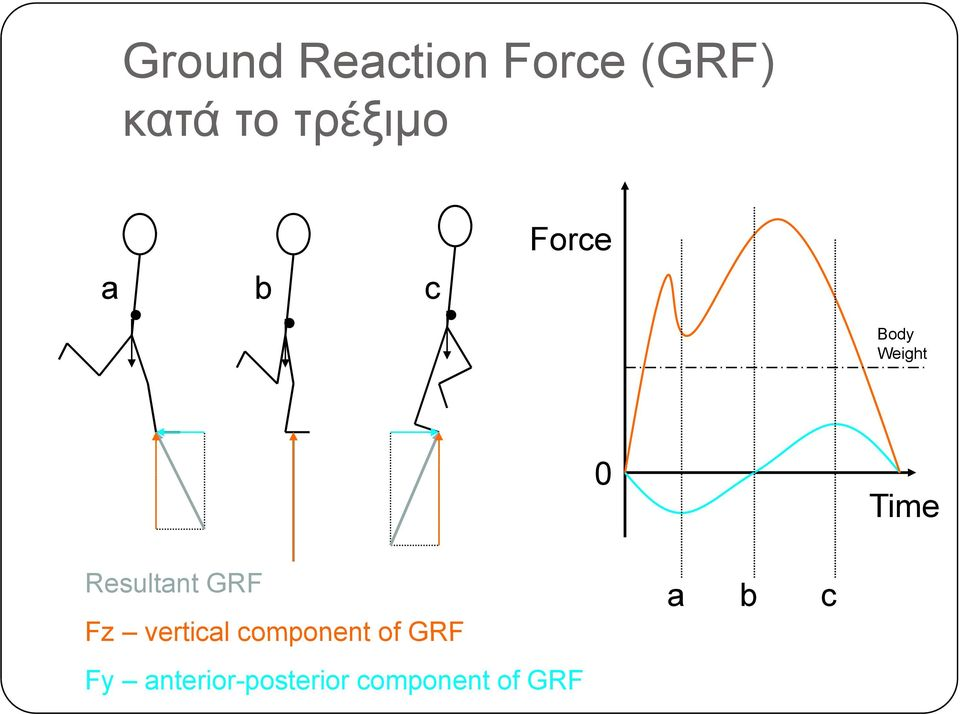 Resultant GRF Fz vertical component of