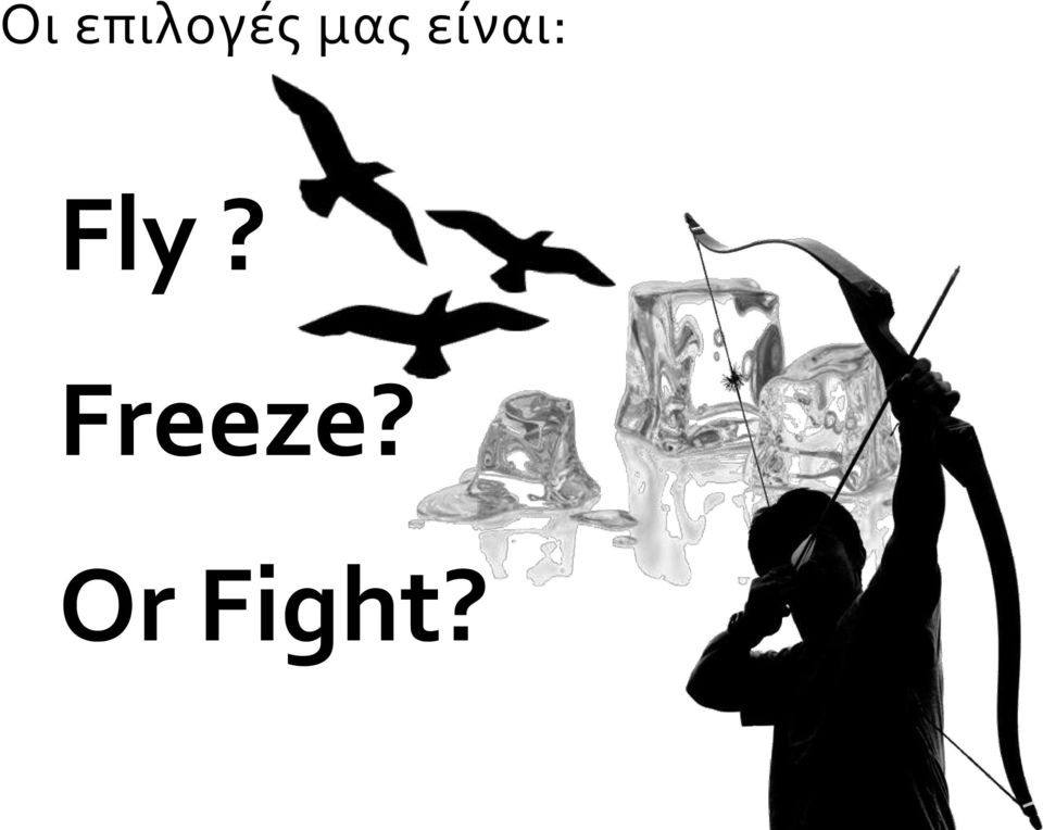 Fly? Freeze?