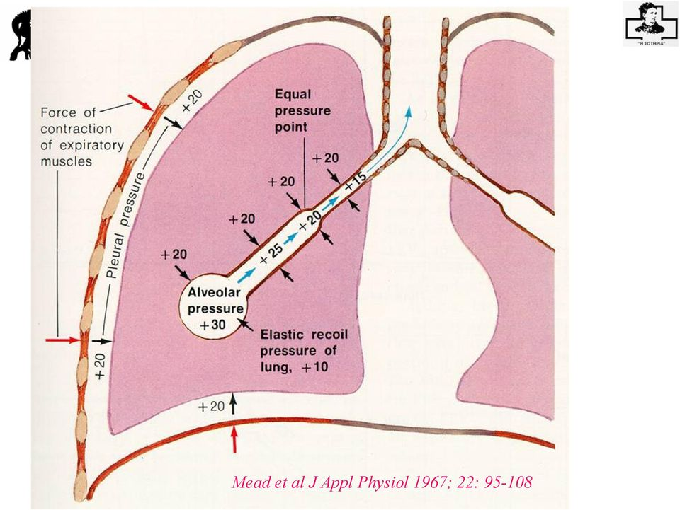 Appl Physiol