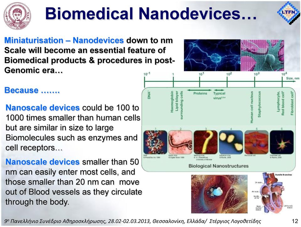Nanoscale devices could be 100 to 1000 times smaller than human cells but are similar in size to large Biomolecules such