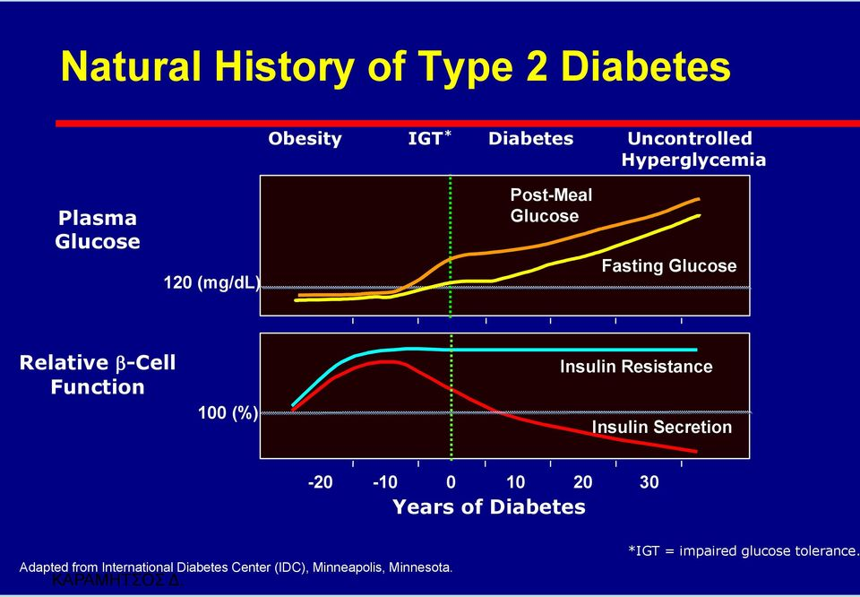 (%) Insulin Resistance Insulin Secretion -20-10 0 10 20 30 Years of Diabetes Adapted from