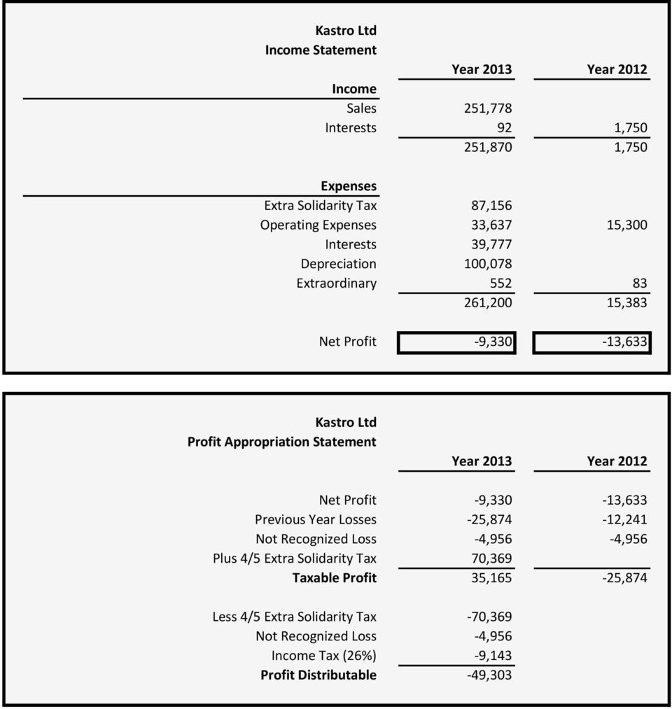 Appropriation Statement Year 2013 Year 2012 Net Profit -9,330-13,633 Previous Year Losses -25,874-12,241 Not Recognized Loss -4,956-4,956 Plus 4/5 Extra