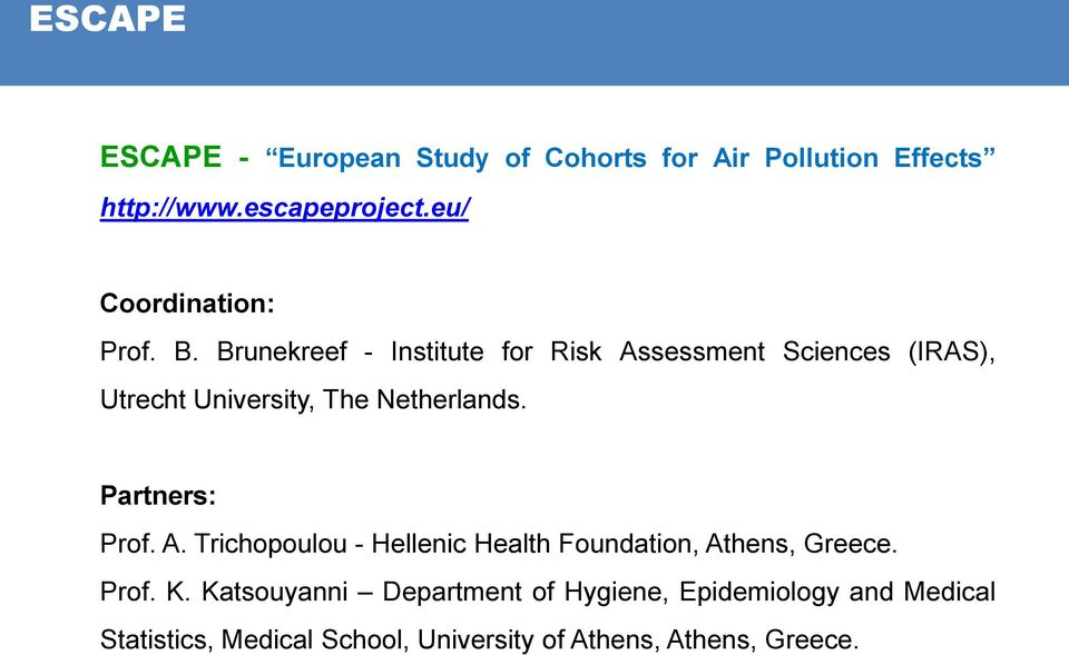 Netherlands. Partners: Prof. A. Trichopoulou - Hellenic Health Foundation, Athens, Greece.