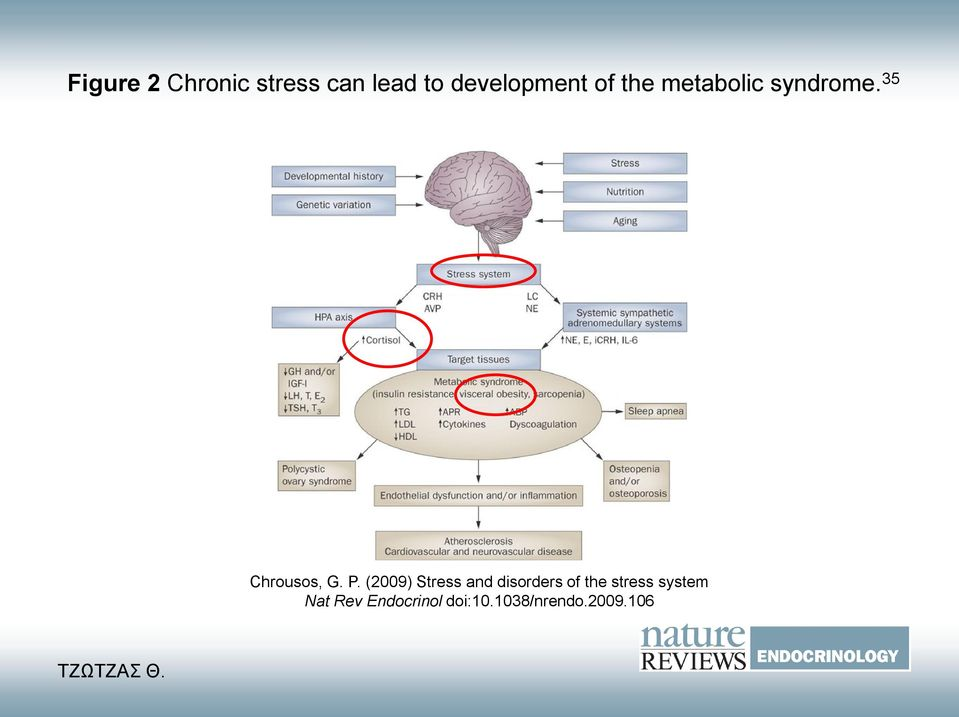(2009) Stress and disorders of the stress
