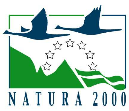 7 του έργου LIFE 09 (NAT/GR/000343) Actions for the conservation of coastal habitats and significant avifauna species in NATURA 2000 network sites of Epanomi and Aggelochori Lagoons, Greece - Δράσεις