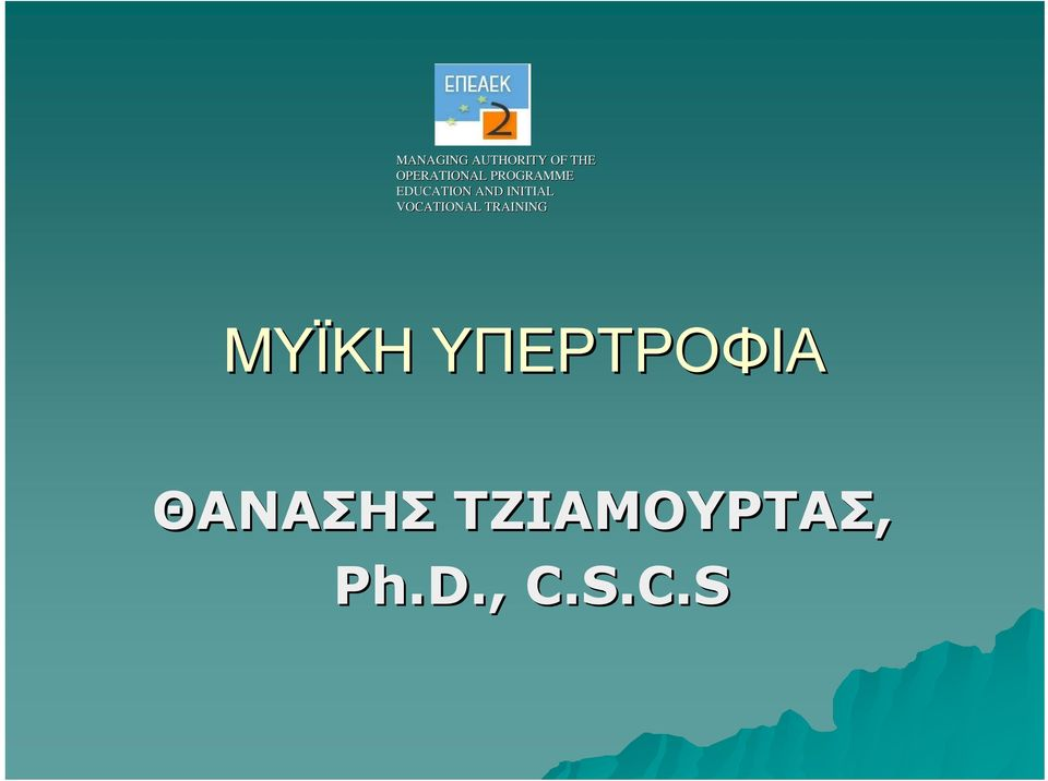INITIAL VOCATIONAL TRAINING ΜΥΪΚΗ