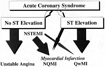 ACC/AHA 2002 Guideline Update for Management of Patients with Unstable Angina and Non-ST-Segment Elevation Myocardial Infarction ( J Am Coll Cardiol 2002; 40:366-74 ) Οξέα στεφανιαία σύνδρομα «Acute