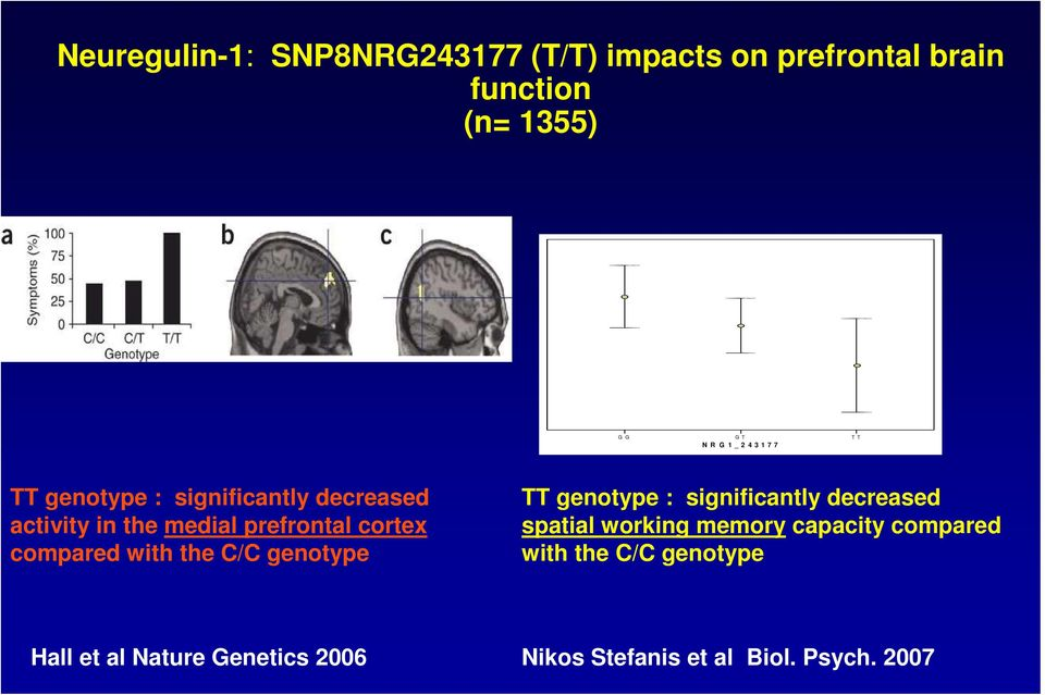compared with the C/C genotype TT genotype : significantly decreased spatial working memory