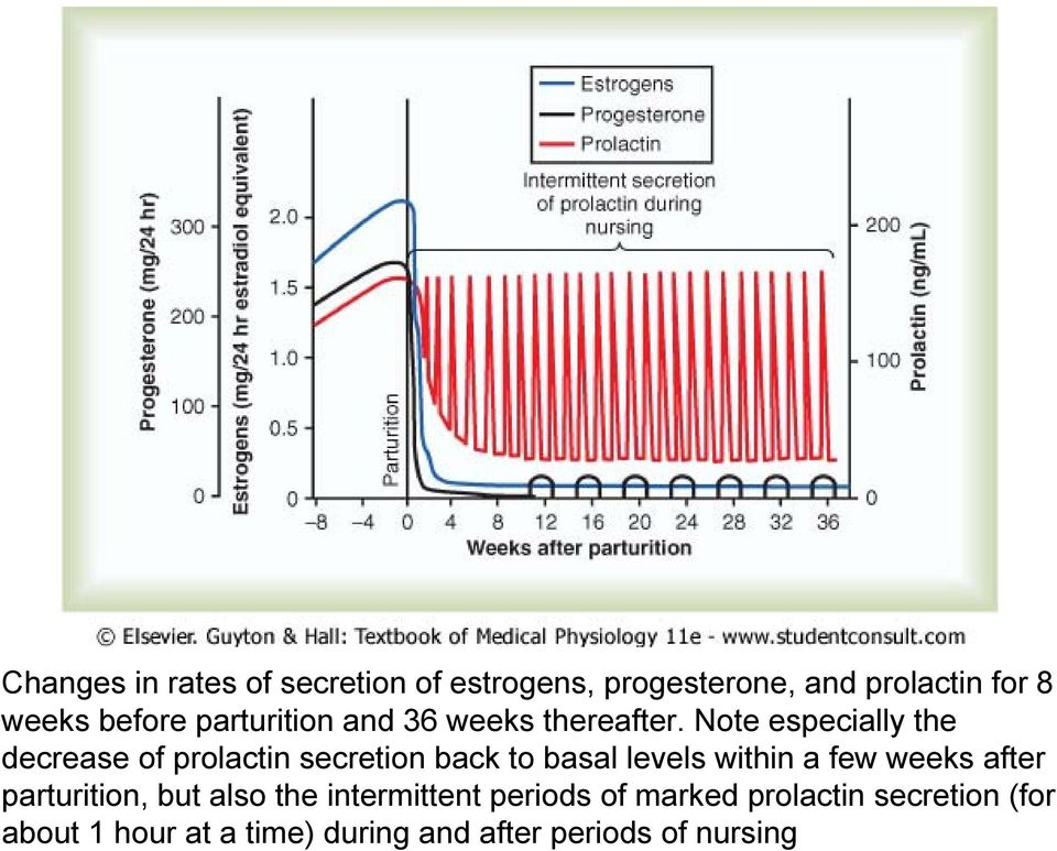 Note especially the decrease of prolactin secretion back to basal levels within a few weeks
