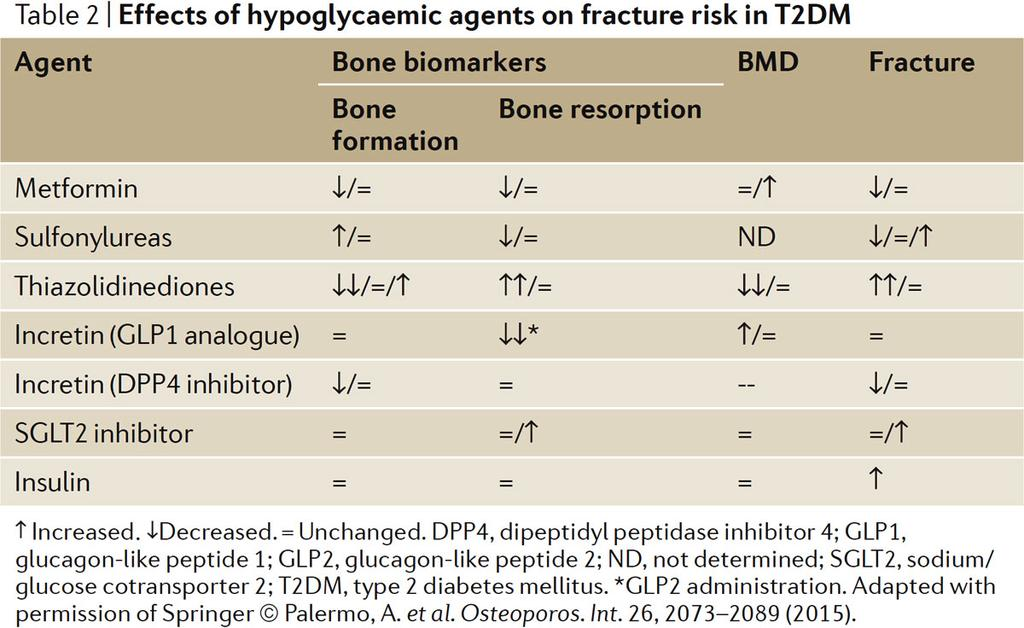 Effects of hypoglycaemic agents on fracture risk in T2DM Napoli, N. et al.