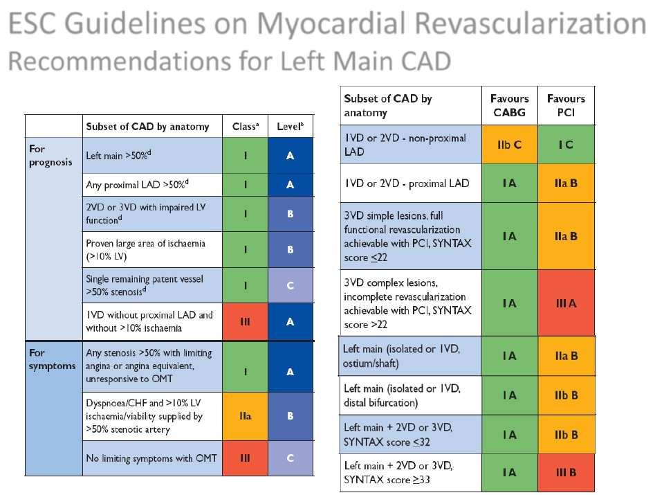 ESC Guidelines on Myocardial