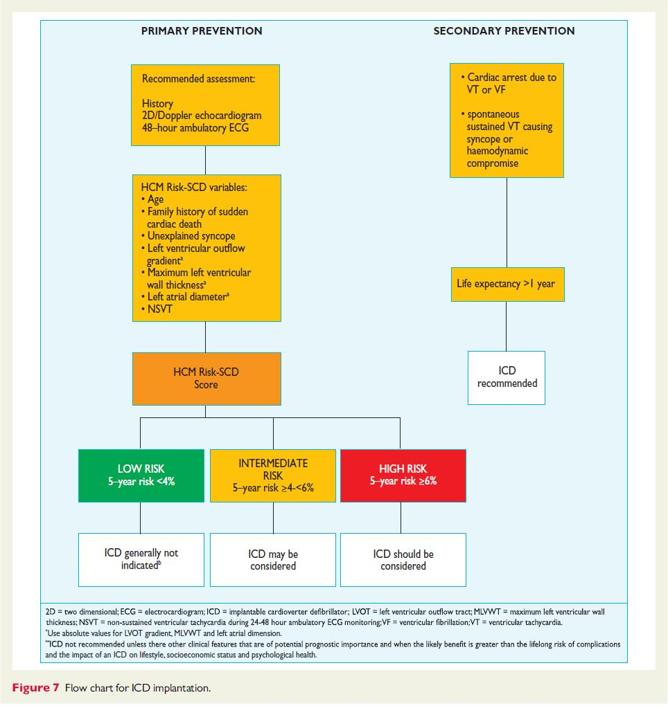 2014 ESC Guidelines on diagnosis and management of hypertrophic cardiomyopathy The Task Force for